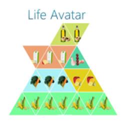 Life Avatar